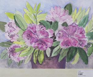 Blühende Topfpflanze 2