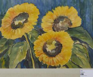 Prachtvolle Sonnenblumenblüten