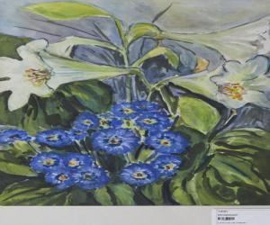 Blaue und Weiße Blüten